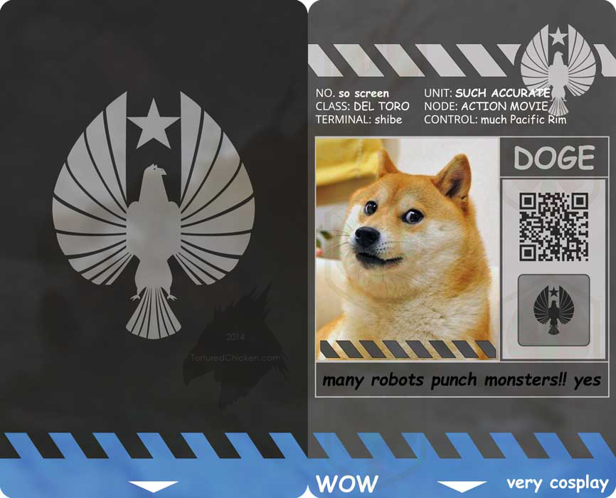 So wow, much pacific doge.